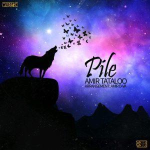 نامبر وان موزیک | دانلود آهنگ جدید Amir-Tataloo-Pile-300x300