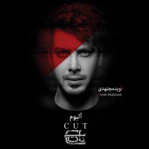 نامبر وان موزیک | دانلود آهنگ جدید Navid-Mojtahedi-CUT-300x300