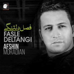 نامبر وان موزیک | دانلود آهنگ جدید Afshin-Moradian-Fasle-Deltangi-300x300