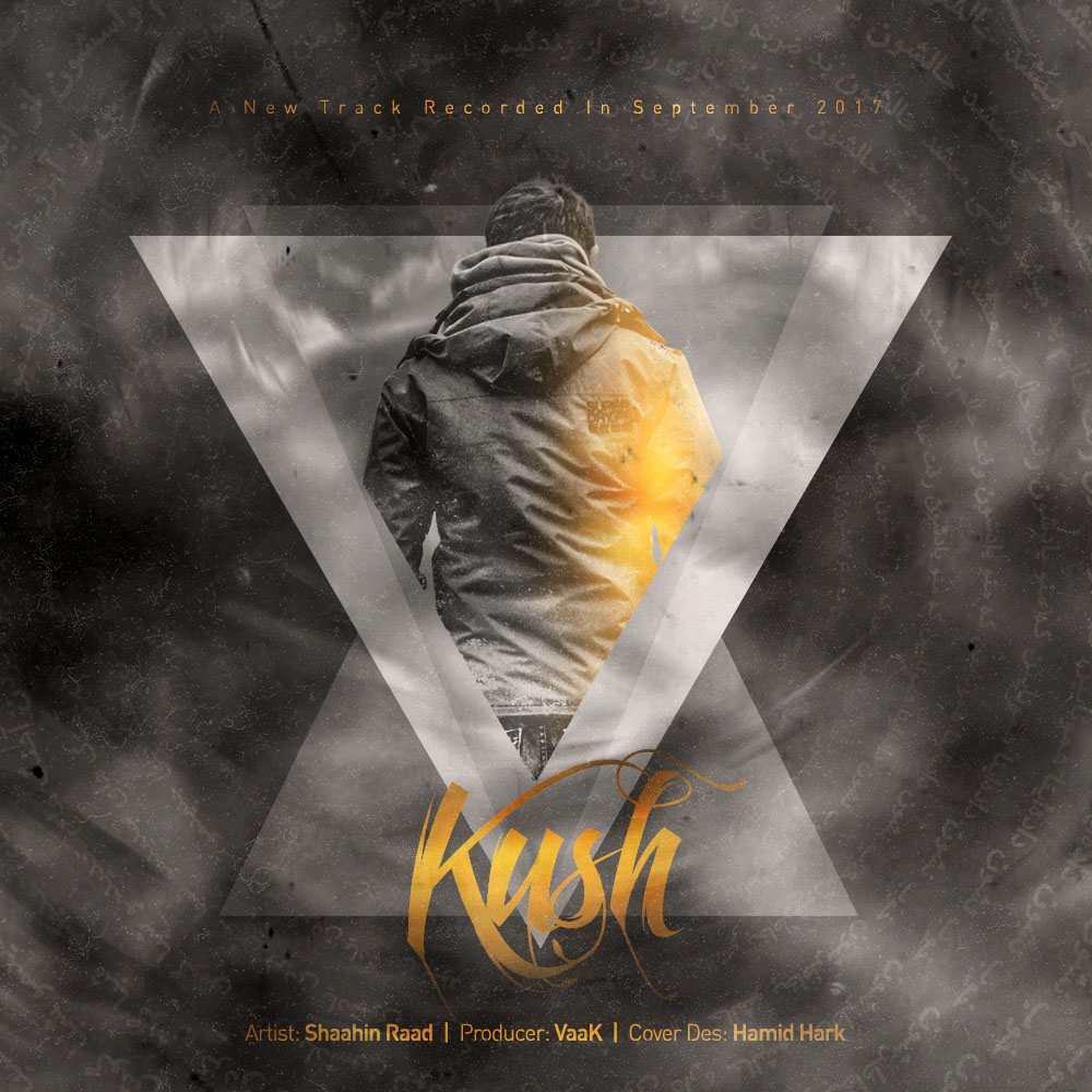 نامبر وان موزیک | دانلود آهنگ جدید Shaahin-Raad-Kush