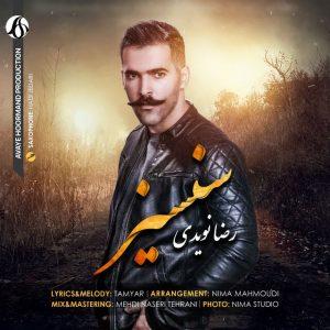 نامبر وان موزیک   دانلود آهنگ جدید Reza-Navidi-Sansiz-300x300