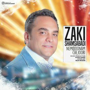 نامبر وان موزیک   دانلود آهنگ جدید Zaki-Shams-Abadi-Nemidoonam-Chejoori-300x300