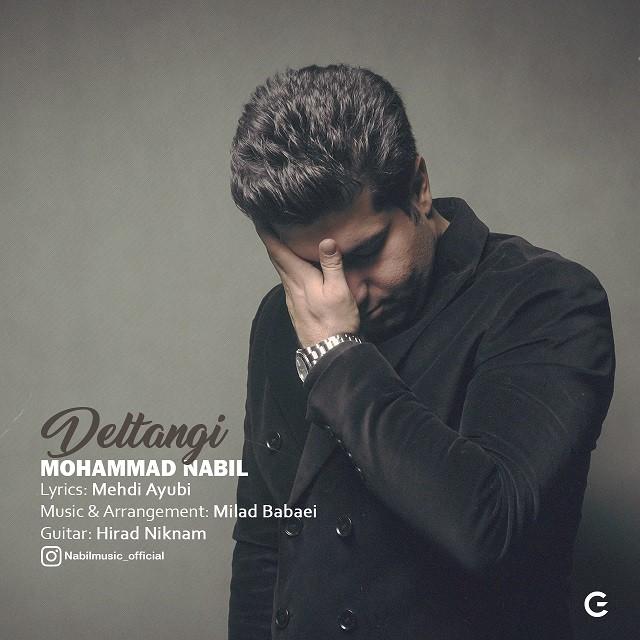 نامبر وان موزیک | دانلود آهنگ جدید Mohammad-Nabil-Deltangi