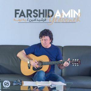 نامبر وان موزیک | دانلود آهنگ جدید Farshid-Amin-Yedooneh-300x300