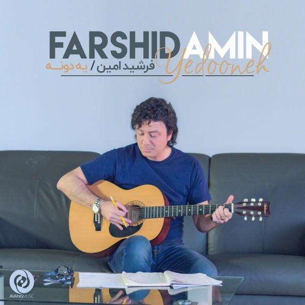 نامبر وان موزیک | دانلود آهنگ جدید Farshid-Amin-Yedooneh