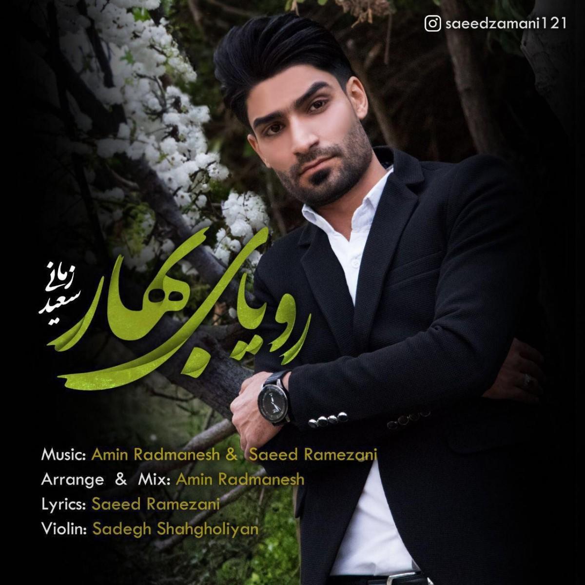 نامبر وان موزیک | دانلود آهنگ جدید Saeed-Zamani-Royaye-Bahar