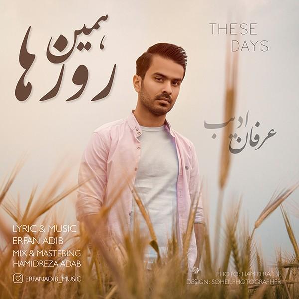 نامبر وان موزیک | دانلود آهنگ جدید Erfan-Adib-Hamin-Rooza