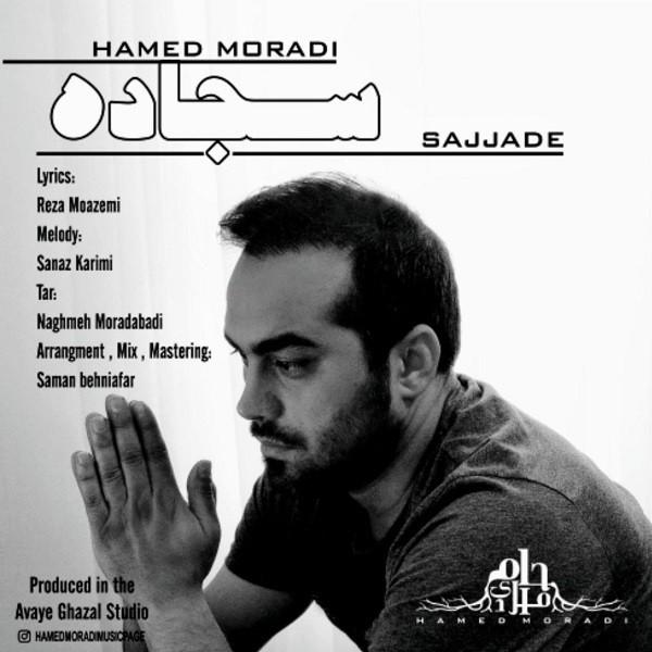نامبر وان موزیک   دانلود آهنگ جدید Hamed-Moradi-Sajjade