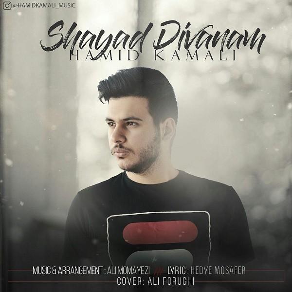 نامبر وان موزیک | دانلود آهنگ جدید Hamid-Kamali-Shayad-Divanam