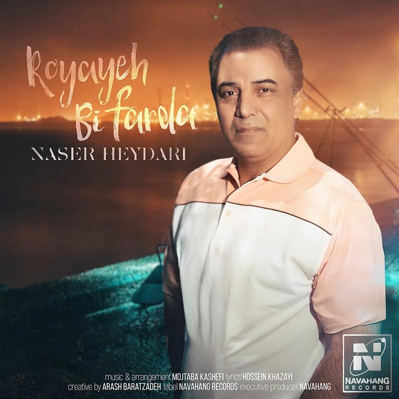 نامبر وان موزیک   دانلود آهنگ جدید Naser-Heydari-Royaye-Bi-Farda