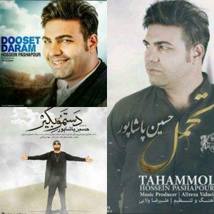 نامبر وان موزیک | دانلود آهنگ جدید Hossein-Pashapour-Dastamo-Begir-300x300