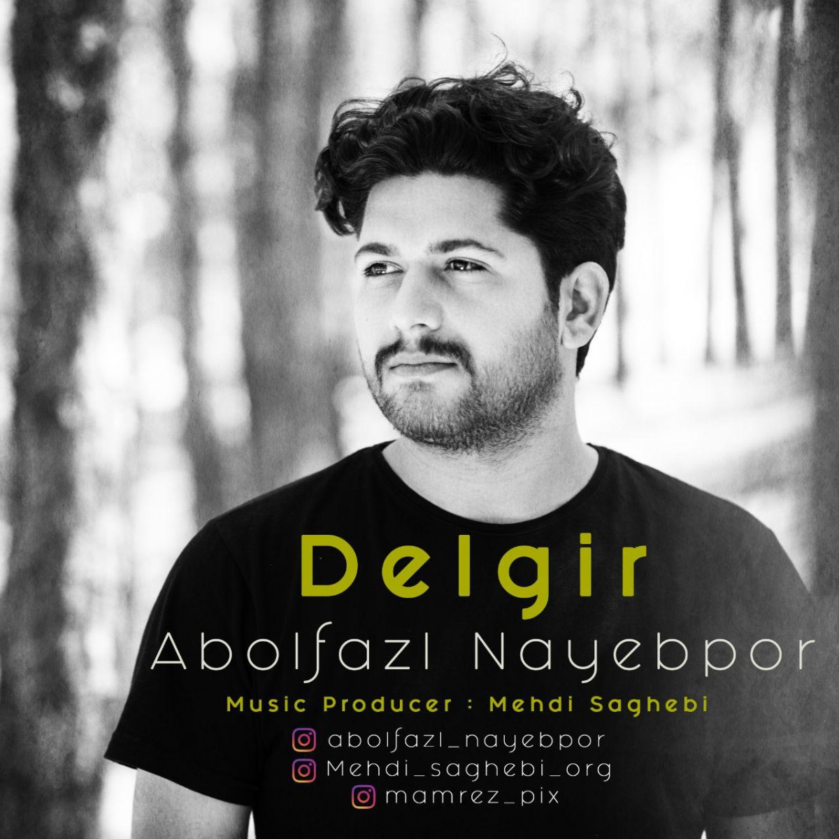 نامبر وان موزیک | دانلود آهنگ جدید Abolfazl-Nayebpor-Delgir