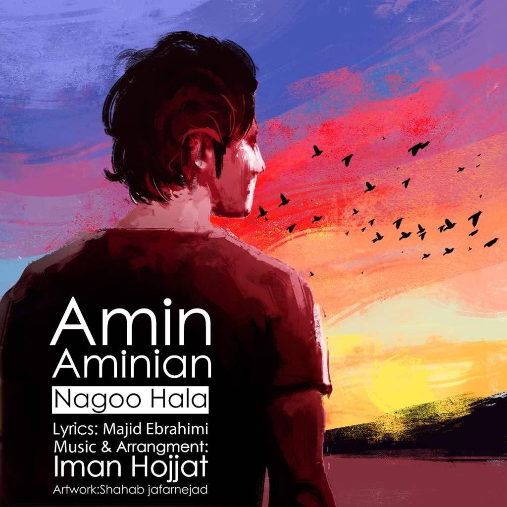نامبر وان موزیک | دانلود آهنگ جدید Amin-Aminian-Nagoo-Hala
