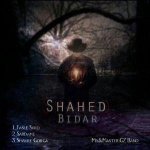 نامبر وان موزیک | دانلود آهنگ جدید Shahed_Bidar-300x300