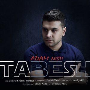 نامبر وان موزیک | دانلود آهنگ جدید Tabesh-Adam-Nisti-300x300