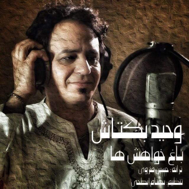 نامبر وان موزیک | دانلود آهنگ جدید Vahid-Baktash-Baghe-Khahesh-Ha