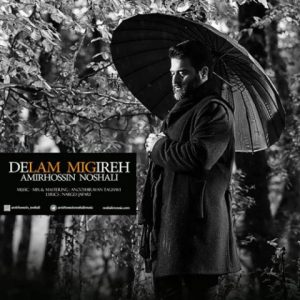 نامبر وان موزیک | دانلود آهنگ جدید Amir-Hossin-Noshali-Delam-Migire-300x300