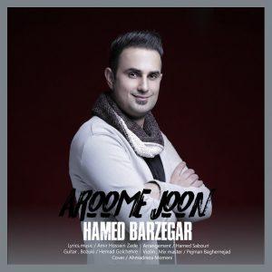 نامبر وان موزیک | دانلود آهنگ جدید Hamed-Barzegar-Aroome-Joon-480p-Number1Music-300x300