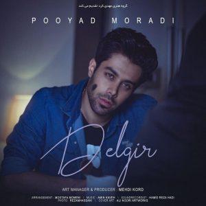 نامبر وان موزیک | دانلود آهنگ جدید Pooyad-Moradi-Delgir-300x300