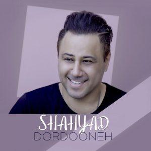 نامبر وان موزیک | دانلود آهنگ جدید Shahyad-Dordooneh-300x300